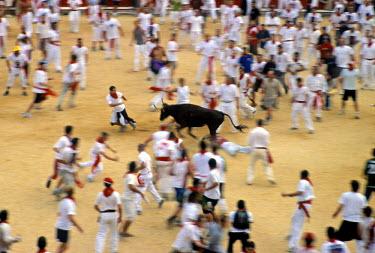 ES11037 The Corrida, San Fermin Festival, Pamplona, Navarra, Spain