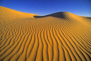 N02026 Sahara Desert, Douz, Tunisia