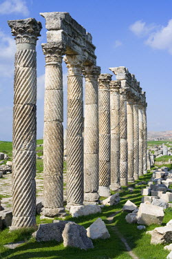 SY01029 Roman city of Apamea, Syria