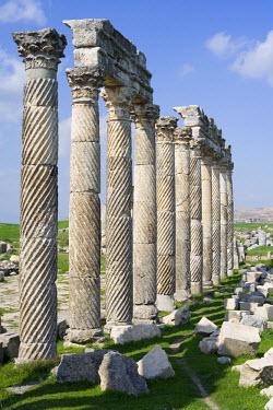 SY01029 Roman city of Apamea, Syria