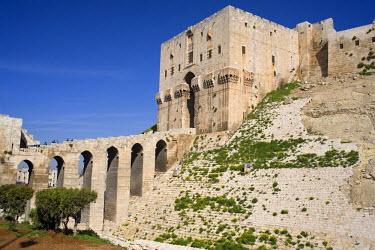 SY01034 Aleppo citadel, Syria