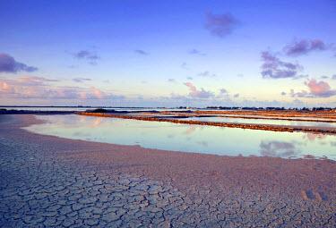 TC01023 Salt Ponds, Salt Cay Island, Turks & Caicos, Caribbean