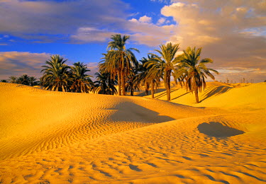 TU03151 Desert, Tunisia