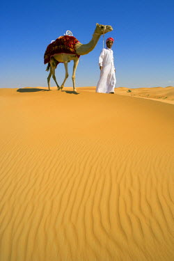UE01150 Sand Dunes, Arabian Desert, Dubai, United Arab Emirates