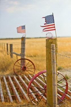 US32022 Cattle grid, Montana, USA