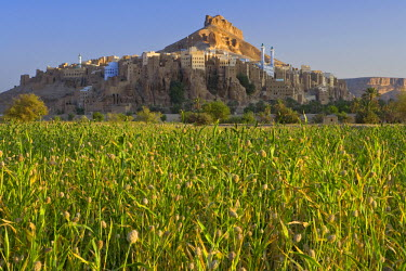 YM01130 Al Hajjarayn, Wadi Dawan nr Wadi Hadhramawt, Yemen