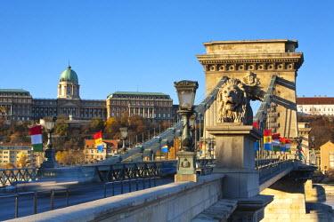 HU01223 Chain Bridge & Royal Palace on Castle Hill, Budapest, Hungary