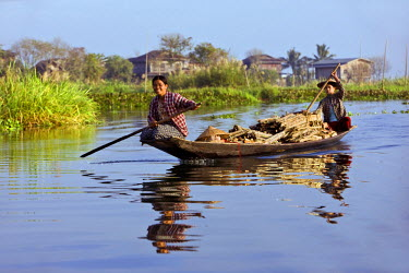 Myanmar, Burma, Lake Inle. Women taking wood to market by boat on Lake Inle with a typical Intha village of houses on stilts in the background.