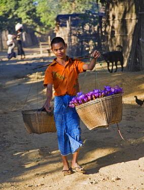 MYA1370 Myanmar, Burma, Mrauk U. A lotus flower seller at a village near Mrauk U.