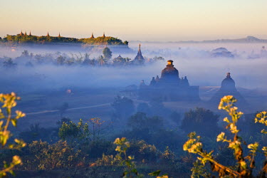 MYA1399 As the sun rises, the early morning mist shrouding the historic temples of Mrauk U begins to lift.