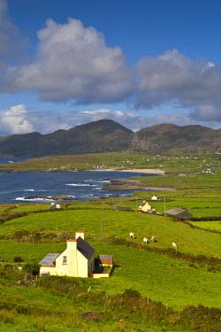 IE02314 Beara Peninsula, Co. Cork & Co. Kerry, Ireland