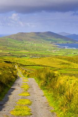 IE02296 Landscape near Allihies, Beara Peninsula, Co. Cork & Co. Kerry, Ireland