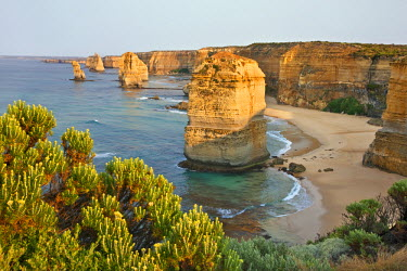 AUS0845 Australia, Victoria. Some of the Twelve Apostles standing in shallow water in the Port Campbell National Park.