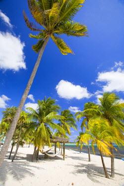 CA42_GJO0090_M Southern Cross Club, Little Cayman, Cayman Islands, Caribbean.