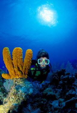 CA03_MWE0000_M Caribbean, Cayman Island. Portrait of female scuba diver,  (MR)