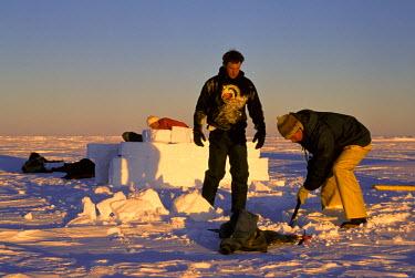 AN02_JSG0011_M Antarctica. Adventurers carving ice blocks for igloo