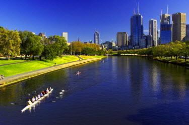 AU01_DWA0970_M Rowing, Yarra River, Melbourne, Victoria, Australia