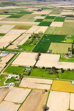 AU02_DWA1086_M Farmland near Blenheim, Marlborough, South Island, New Zealand