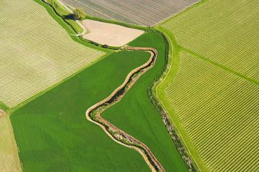 AU02_DWA1101_M Farmland and Vineyards near Blenheim, Marlborough, South Island, New Zealand