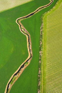 AU02_DWA1103_M Farmland and Vineyards near Blenheim, Marlborough, South Island, New Zealand