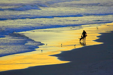 AU02_DWA1797_M Man Walking Dog at the end of the day, Blackhead Beach, South of Dunedin, South Island, New Zealand