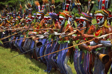 OC12_KSU0061_M Highlands warriors marching performance at Sing Sing Festival, Mt. Hagen, Papua New Guinea