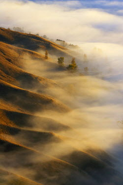 AU02_DWA3887_M View from Te Mata Peak and Early Morning Mist along Ridgelines, Hawkes Bay, North Island, New Zealand