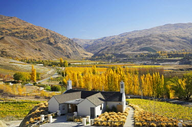 AU02_DWA4144_M Mt Difficulty wine tasting room and Autumn Colours, Bannockburn, Central Otago, South Island, New Zealand
