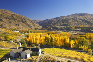 AU02_DWA4568_M Mt Difficulty Wine Tasting Room and Autumn Colours, Bannockburn, Central Otago, South Island, New Zealand