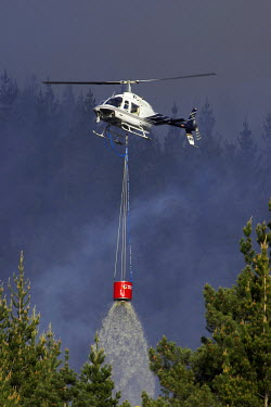 AU02_DWA4676_M Helicopter Fighting Forest Fire, Dunedin, South Island, New Zealand