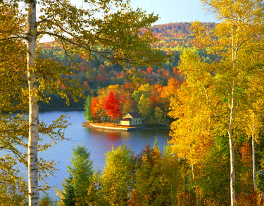 US20_BJA0001_M USA, Maine, Wyman Lake, Summer home on point surrounded by fall colors