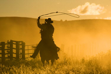 US38_BJA0358_M USA, Oregon, Seneca, Ponderosa Ranch. Silhouette of a wrangler swinging lasso at sunset (MR) (PR)