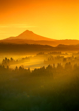 US38_JMI0183_M Sunrise orange colors the fog in the valley in front of Mt Hood, Oregon, seen from Jonsrud viewpoint