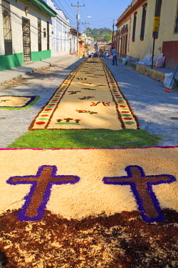 HN01087 Honduras, Copan, Santa Rosa De Copan, Historic town center, Samana Santa, Holy Cross Procession, Sawdust carpets, carpets of flowers and sawdust