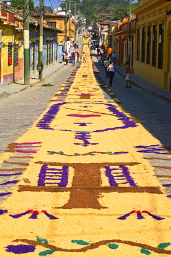 HN01083 Honduras, Copan, Santa Rosa De Copan, Historic town center, Samana Santa, Sawdust carpets, carpets of flowers and sawdust for Holy Cross Procession