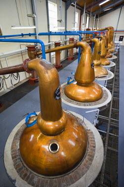 TPX12304 Scotland, Speyside, Dufftown, Glenfiddich Whiskey Distillery, Copper Stills