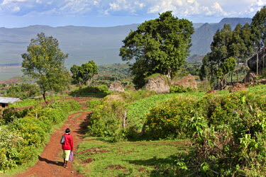 KEN6225 Kenya, Tambach District. A woman walks home near the Elgeyo Escarpment after shopping at Iten.