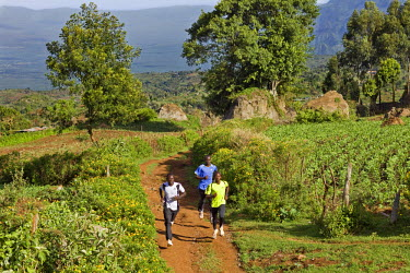 KEN6227 Kenya, Tambach District. Kenyas long distance runners, based at a high altitude training camp at Iten, train in the hilly country near the Elgeyo Escarpment.