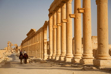 SY1282 Syria, Palmyra. Riding amongst the ancient ruins of Queen Zenobia's city at Palmyra.