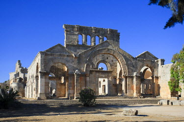 SY01164 Syria, Aleppo, the Dead Cities, Ruins of the Basilica of Saint Simeon (Qala'at Samaan)