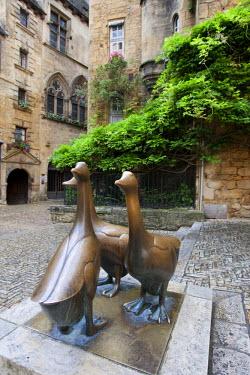 FRA6664AW Bronze statue closeup of goose. Place du march� aux oies.Sarlat, perigord Dordogne France.