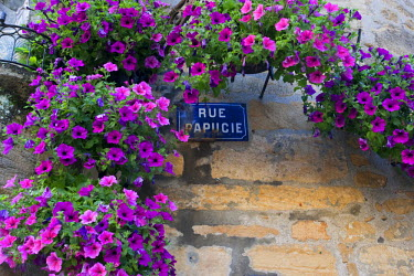 FRA6668AW A street sign in Sarlat France, covered in flowers