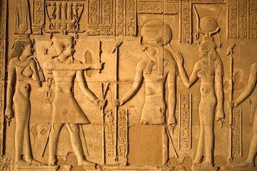 EG02586 Egypt, Kom Ombo, Dual Temple of Sobek and Haroerus, Hypostyle Hall