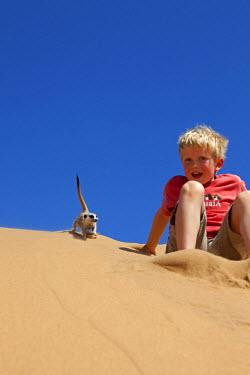 NAM4013 Namibia, Skeleton Coast, Namib Desert. A young boy revels in the close proximity of a curoius meerket (Suricata suricatta) on Namibias coastal sand dune belt (MR)