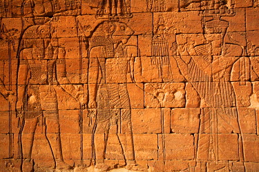 SUD1163 Sudan, Nagaa. The hieroglyphics on the Lion Temple at Nagaa.
