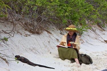 GAL0099 Galapagos Islands, An artist paints a marine iguana on the sandy beach of Espanola island.