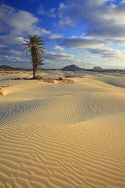 CV01095 Cape Verde, Boavista, Rabil, Viana Desert