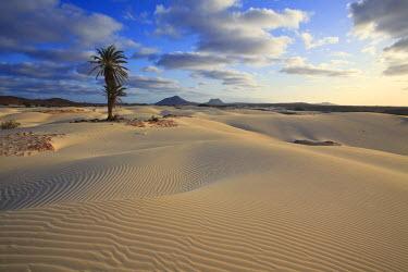 CV01096 Cape Verde, Boavista, Rabil, Viana Desert