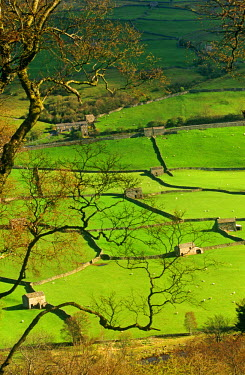 ENG9503 Traditional Farming valley in Swaledale, Yorkshire Dales National Park, England