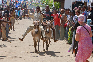 KEN6504 Kenya, The close finish of a donkey race along Lamu�s seafront. These keenly-contested races are held twice a year.